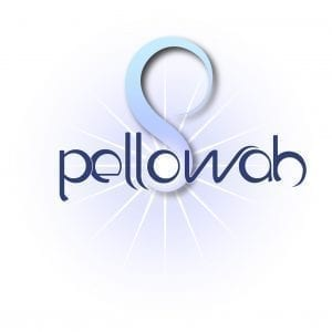 Pellowah Level 1